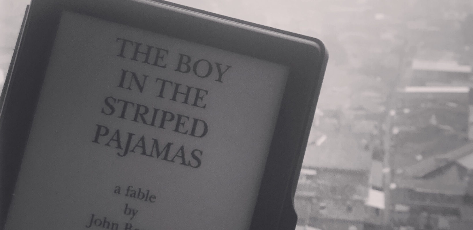 Boy In The Striped Pajamas Book Review A Brown Couple S Travel Stories