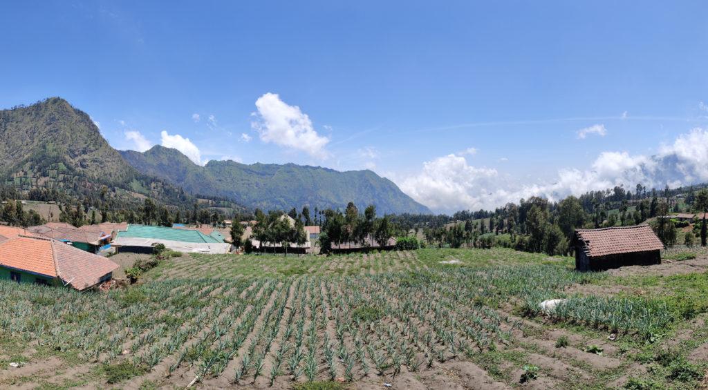 en-route Banyuwangi